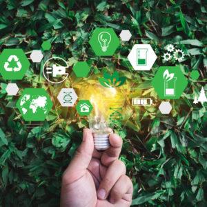 Unternehmenserfolg durch Innovation & Nachhaltigkeitsbewusstsein | Part 1